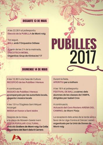 Programa actes Pubilles 2017